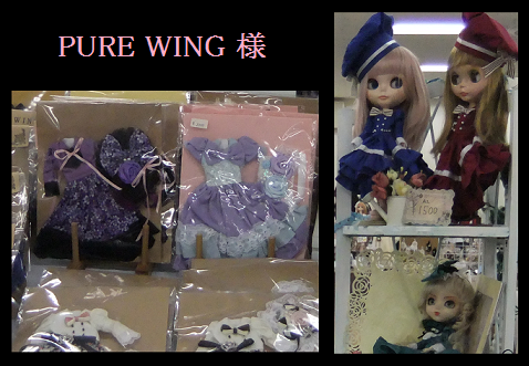ds45 PURE WING様.png